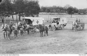 1914 -1918 Australia - Transport vehicles of the Royal Australian Army Medical Corps (RAAMC). Australian War Museum, P04193.002